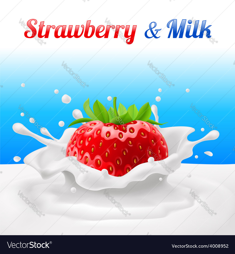Strawberry in milk vector