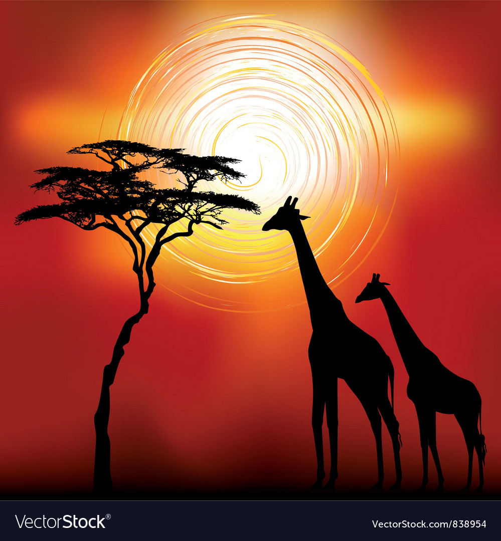 Kenya giraffes vector | Price: 1 Credit (USD $1)