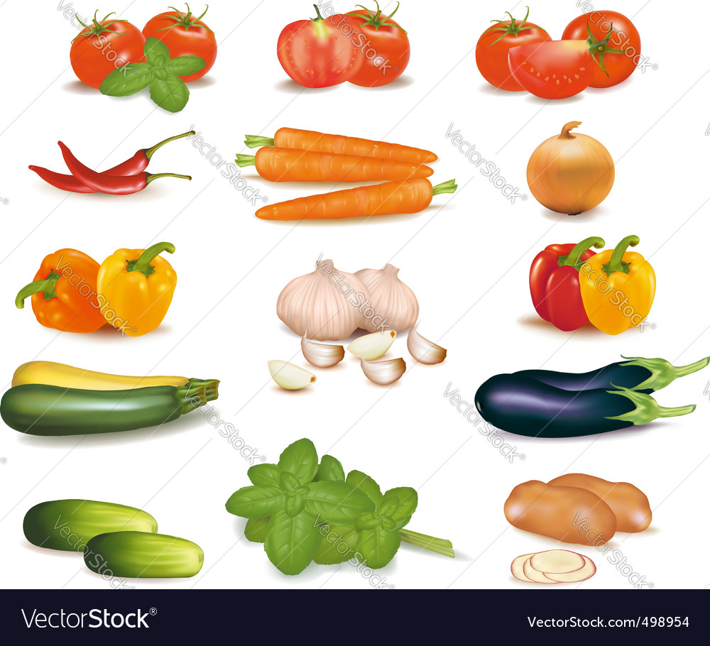 Super group colored vegetables vector | Price: 3 Credit (USD $3)
