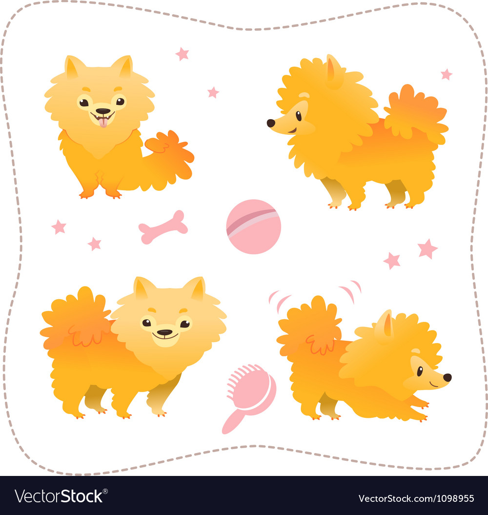Set of spitz puppies vector | Price: 1 Credit (USD $1)