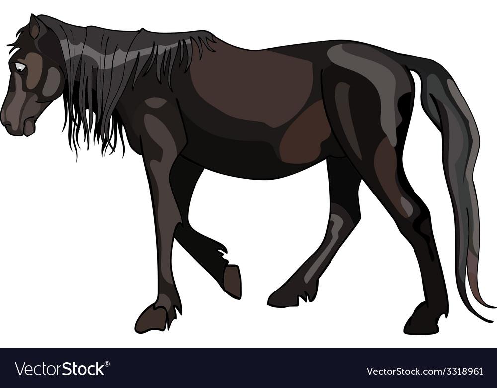 Dark horse walks pensively vector | Price: 1 Credit (USD $1)
