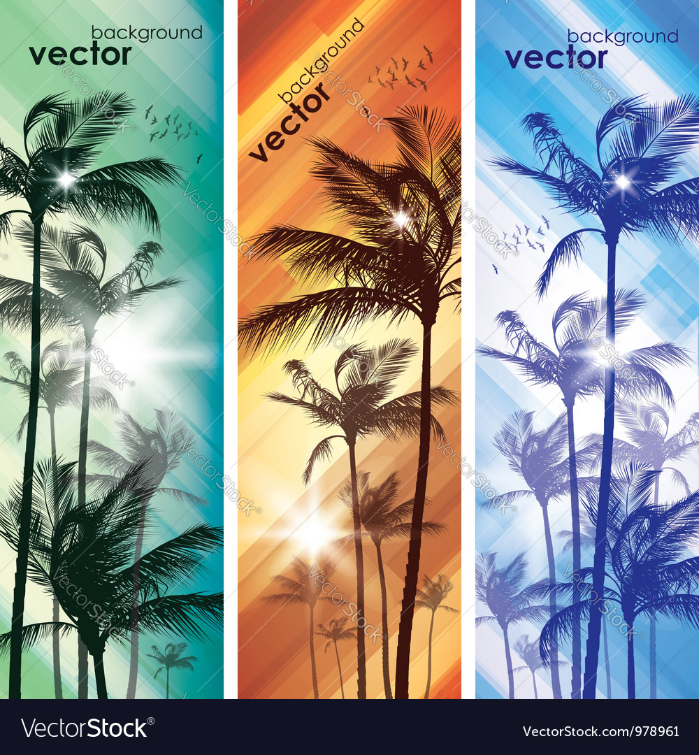 Exotic palm trees background banners vector | Price: 1 Credit (USD $1)