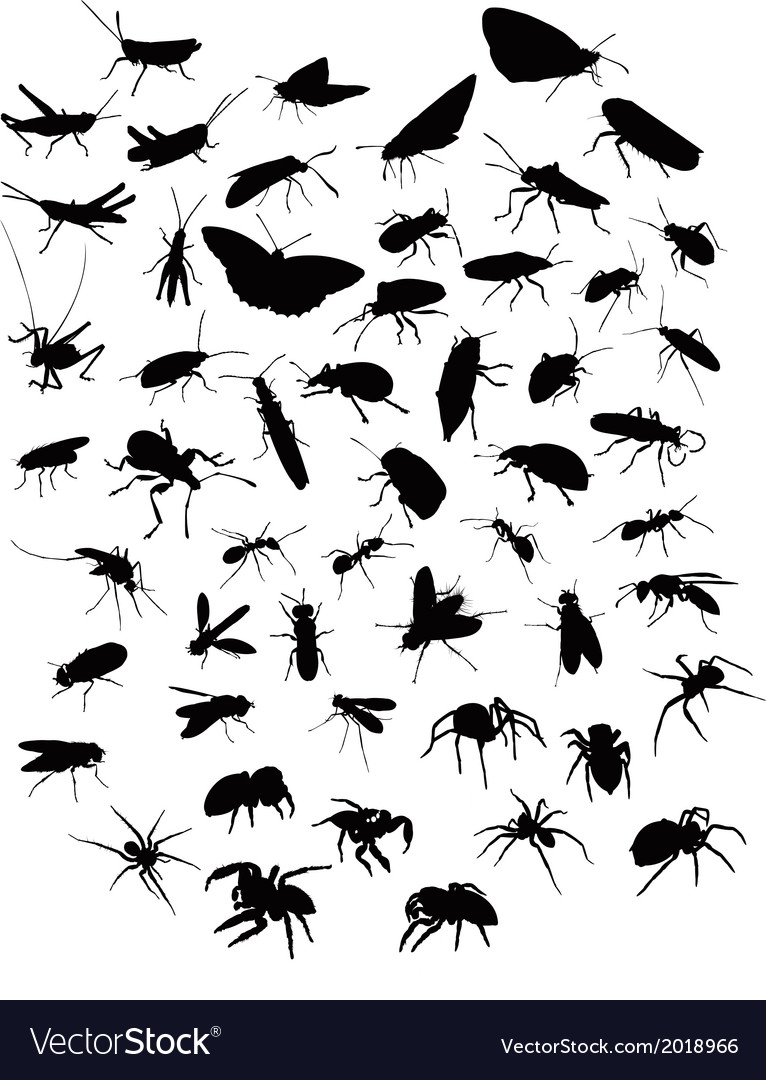 Collection of silhouettes of insects and spiders vector | Price: 1 Credit (USD $1)