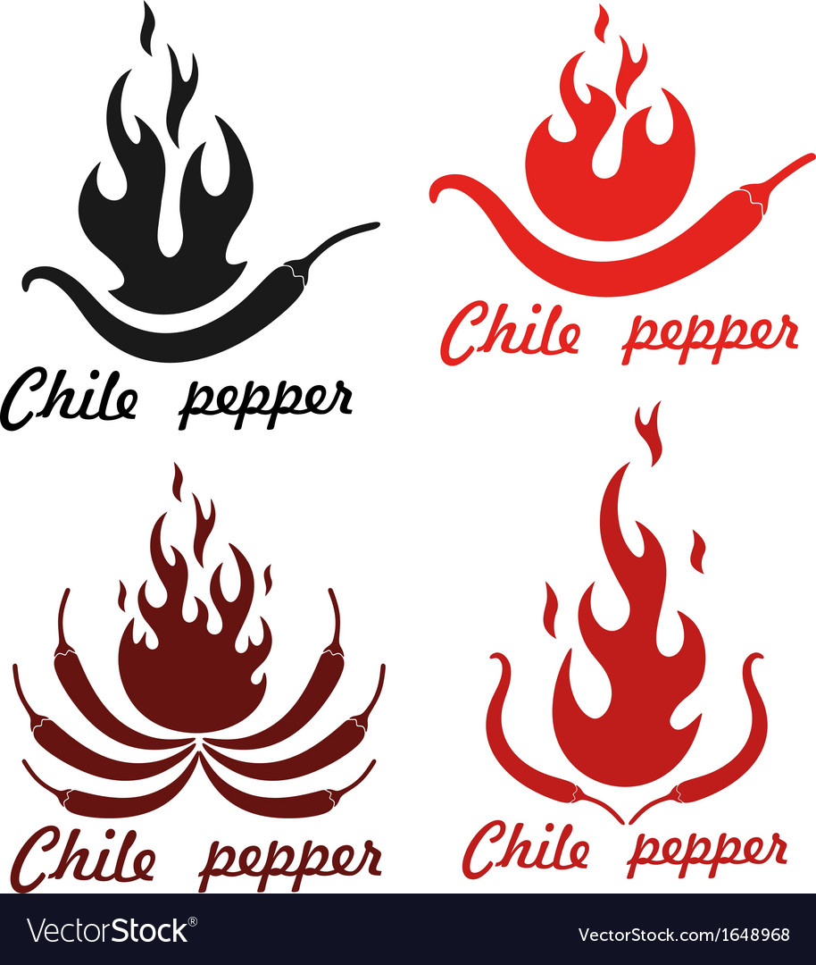 Chile pepper vector | Price: 1 Credit (USD $1)