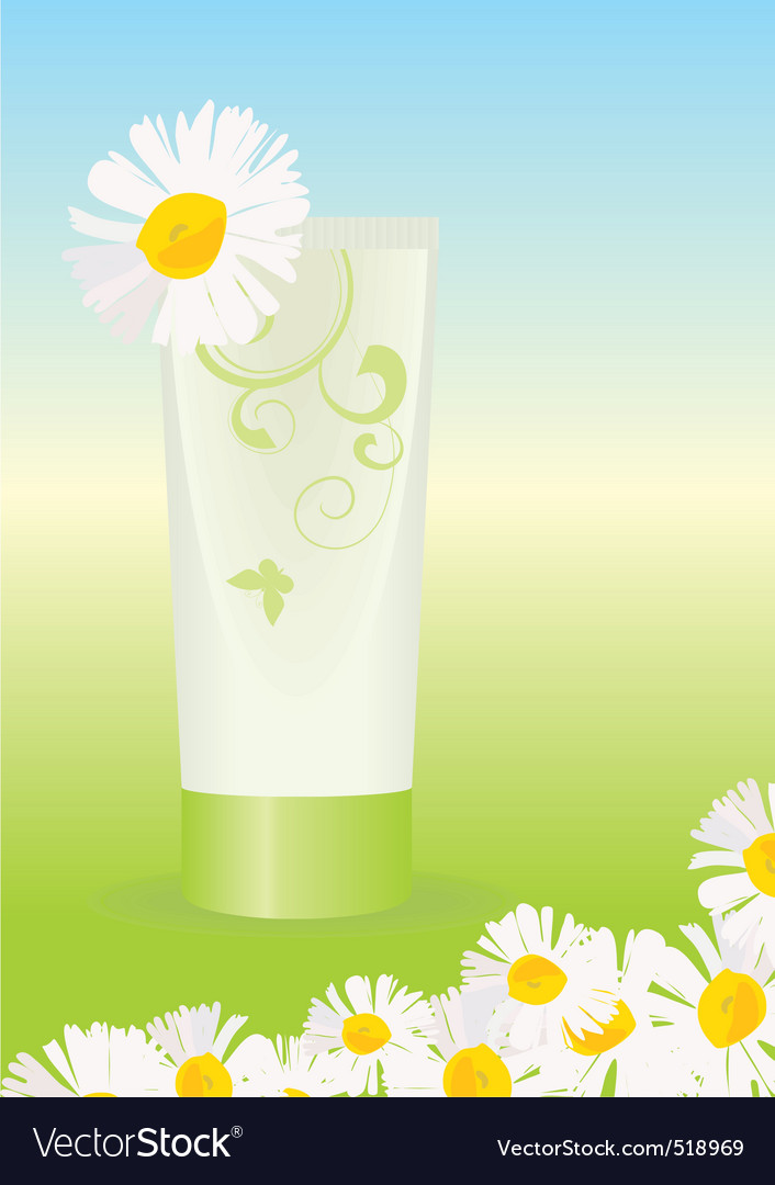 Chamomile cream vector | Price: 1 Credit (USD $1)