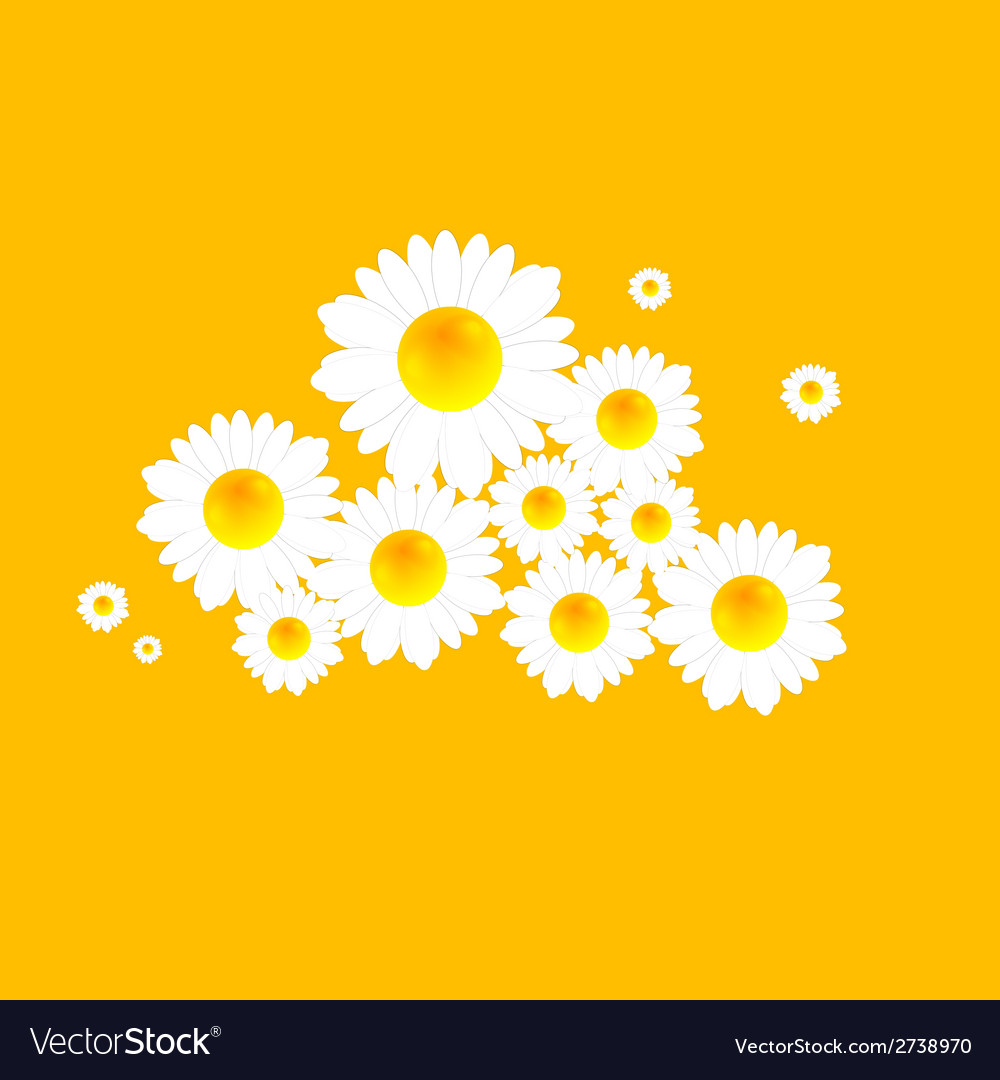 Abstract bright camomiles pattern design vector | Price: 1 Credit (USD $1)