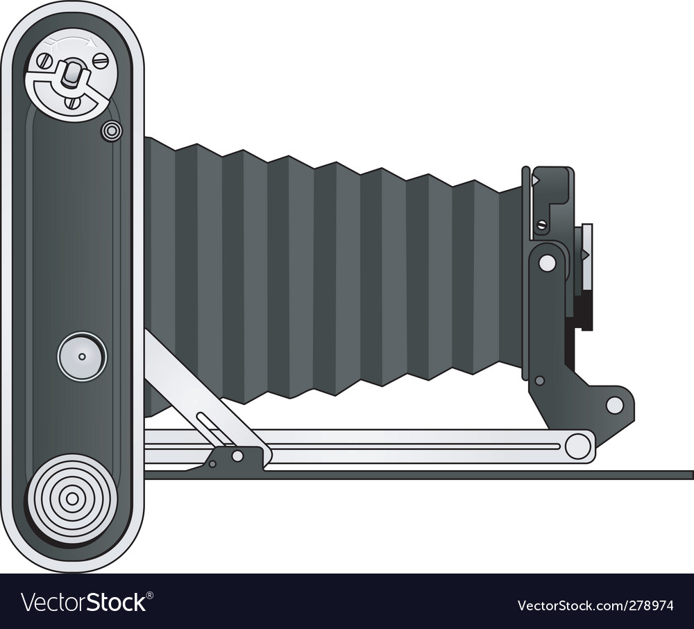 Vintage bellows camera vector | Price: 1 Credit (USD $1)