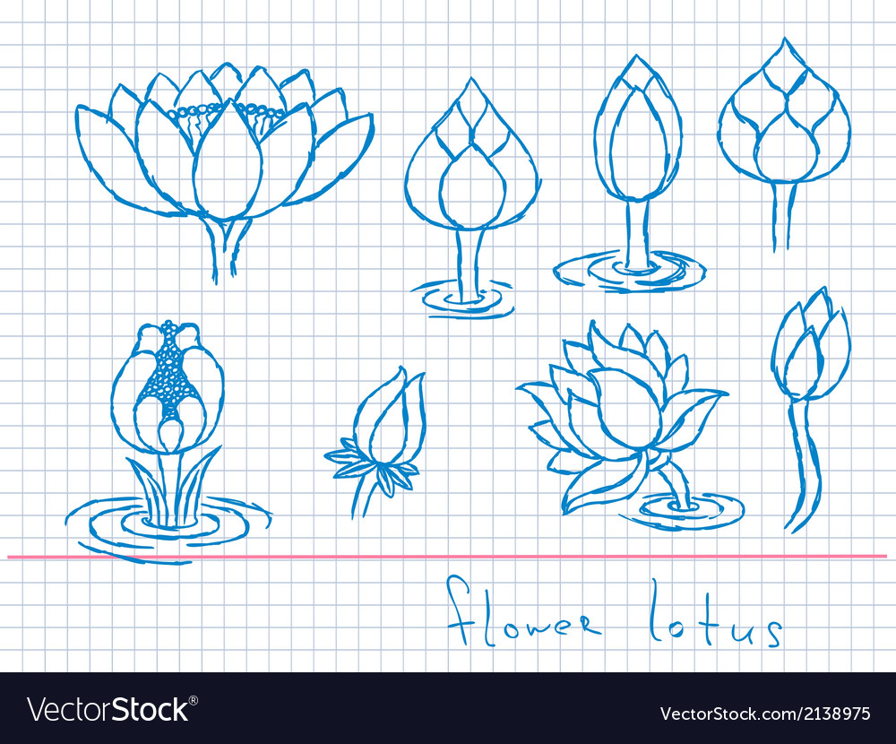 Lotus flowers vector | Price: 1 Credit (USD $1)
