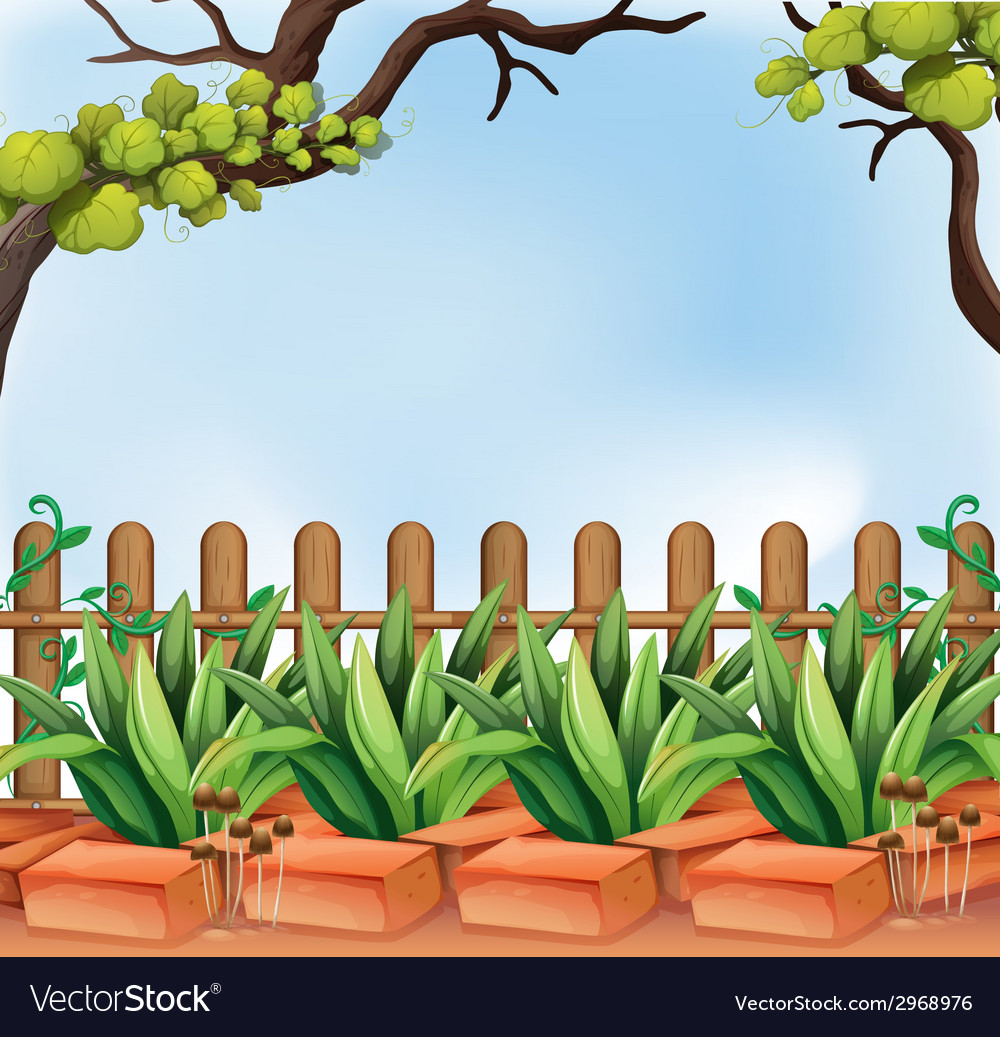 A backyard with a fence vector | Price: 1 Credit (USD $1)