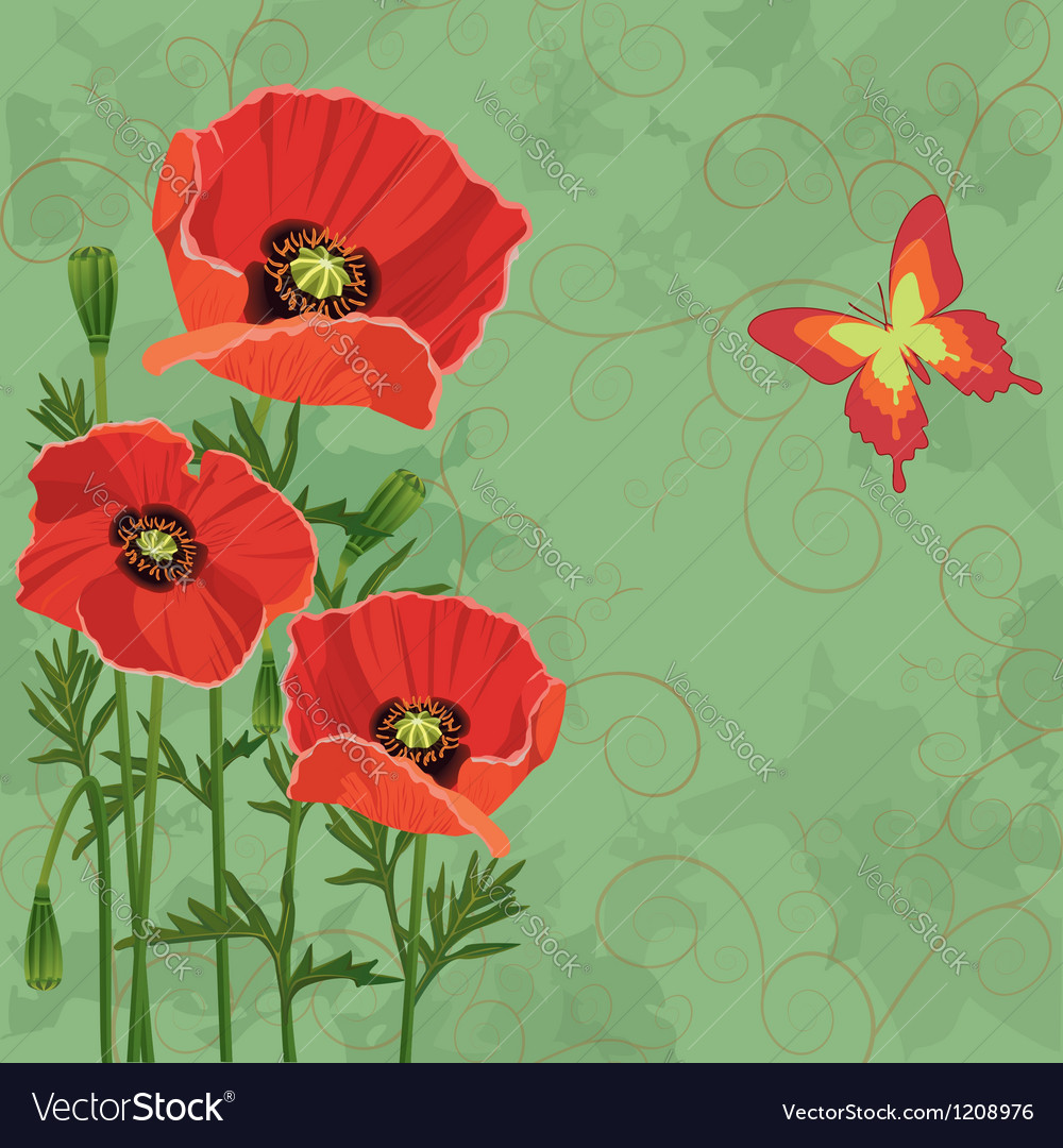 Floral vintage background with poppies vector | Price: 1 Credit (USD $1)