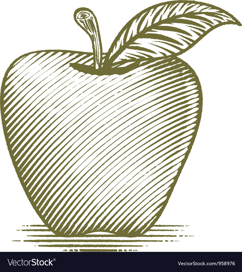 Woodcut ripe apple vector | Price: 1 Credit (USD $1)