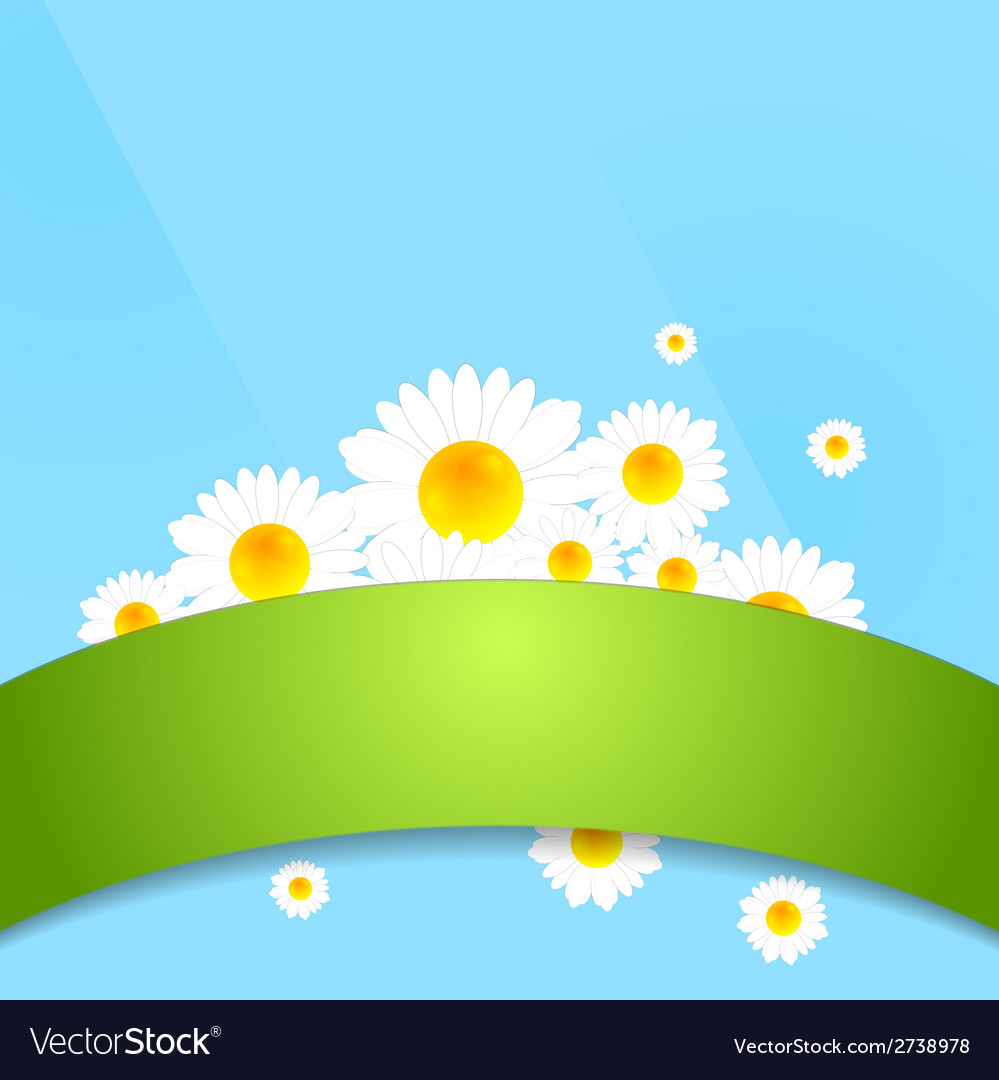 Abstract bright camomiles template design vector | Price: 1 Credit (USD $1)