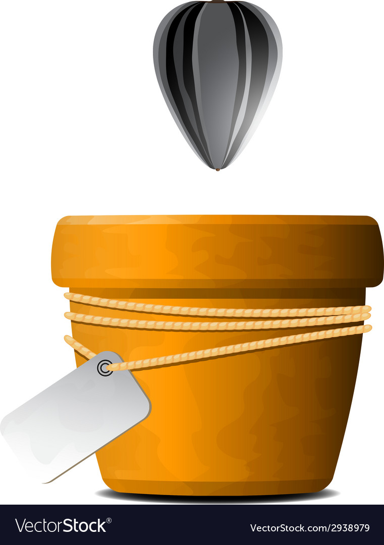 Sunflower seed falls in a flower pot vector   Price: 1 Credit (USD $1)