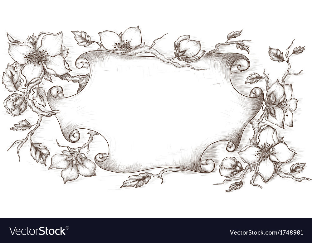Vintage scroll with blossom branches vector | Price: 1 Credit (USD $1)