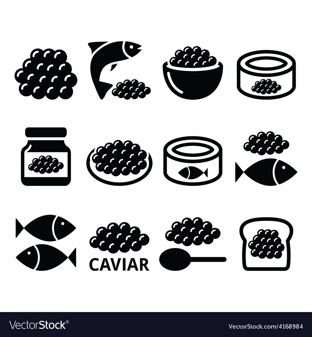 Caviar roe fish eggs icons set vector | Price: 1 Credit (USD $1)