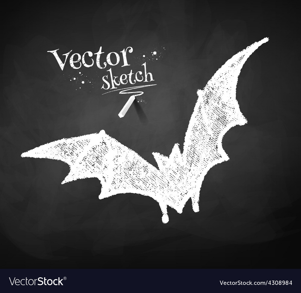 Chalkboard drawing of bat vector | Price: 1 Credit (USD $1)