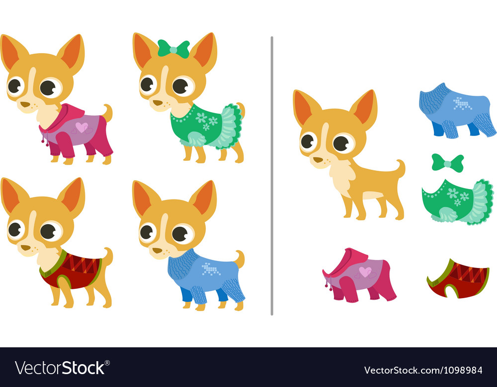 Set of chihuahua puppies and clothes vector | Price: 1 Credit (USD $1)
