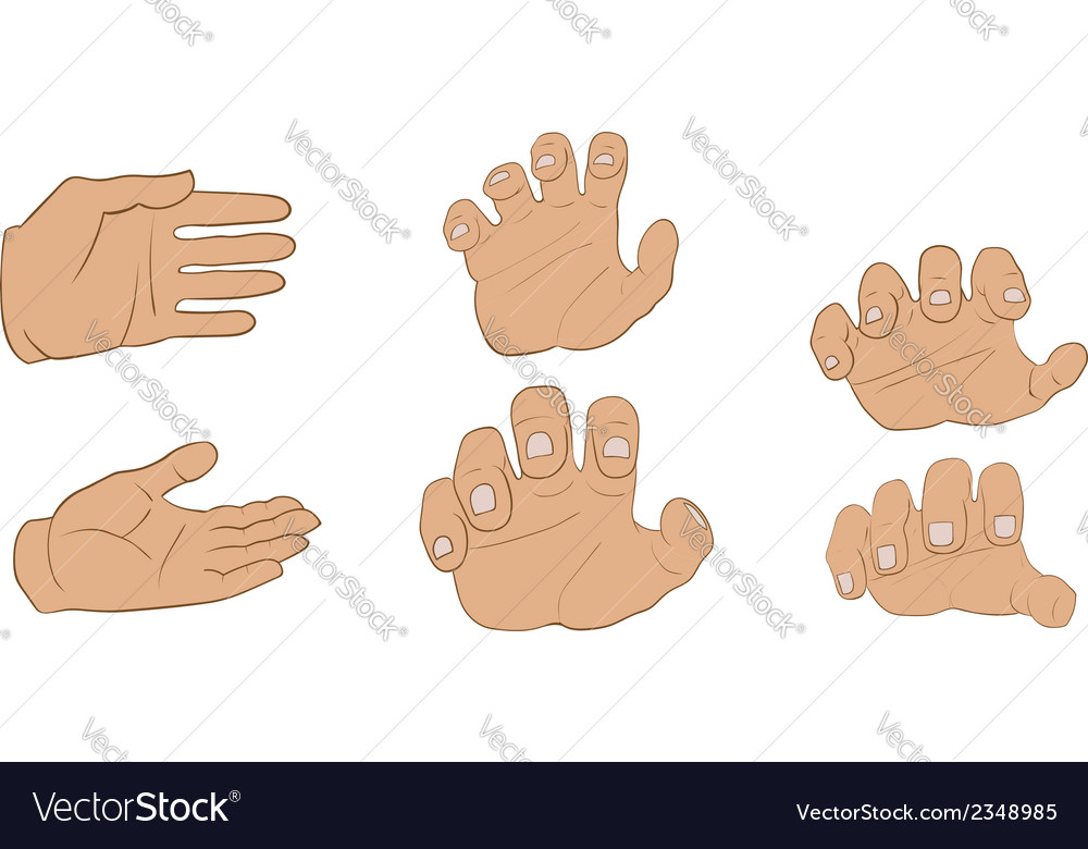 Hands in different angles vector | Price: 1 Credit (USD $1)