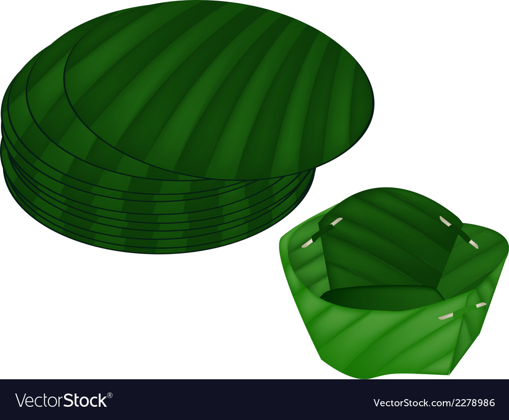 Counts banana leaf or krathong on white background vector | Price: 1 Credit (USD $1)