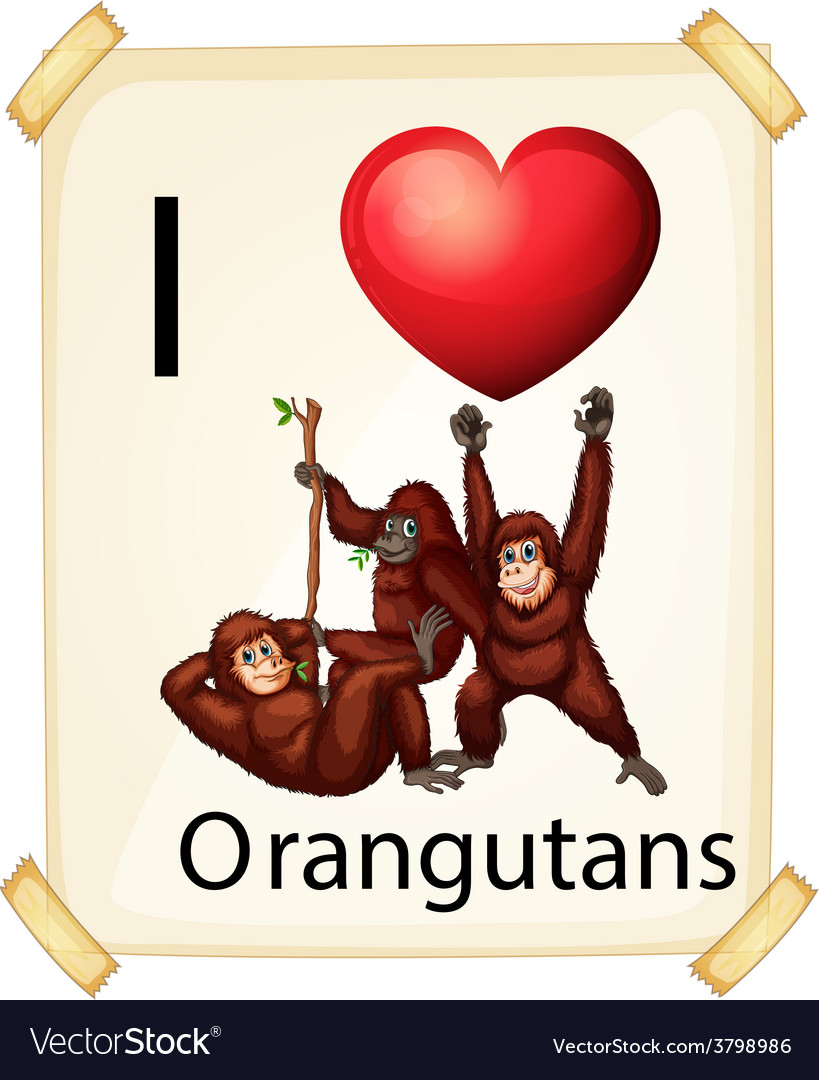 Orangutans vector | Price: 1 Credit (USD $1)