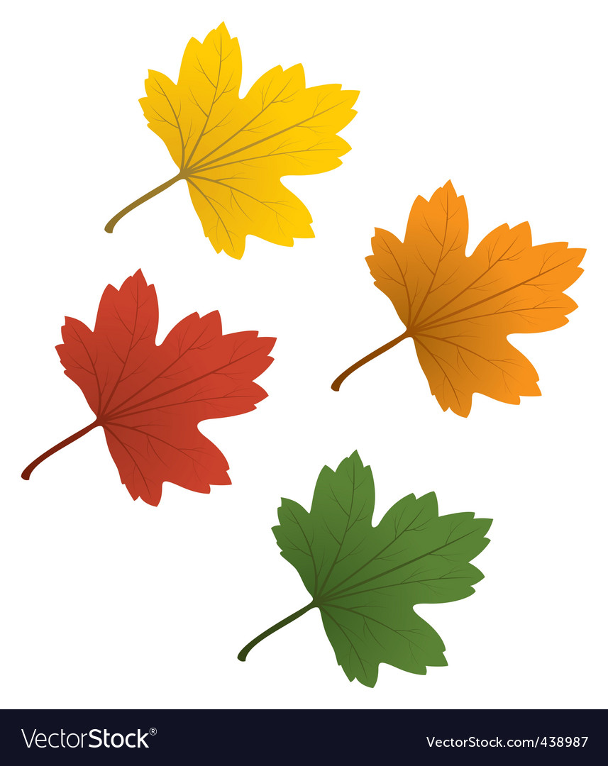 Colorful leaves vector | Price: 1 Credit (USD $1)