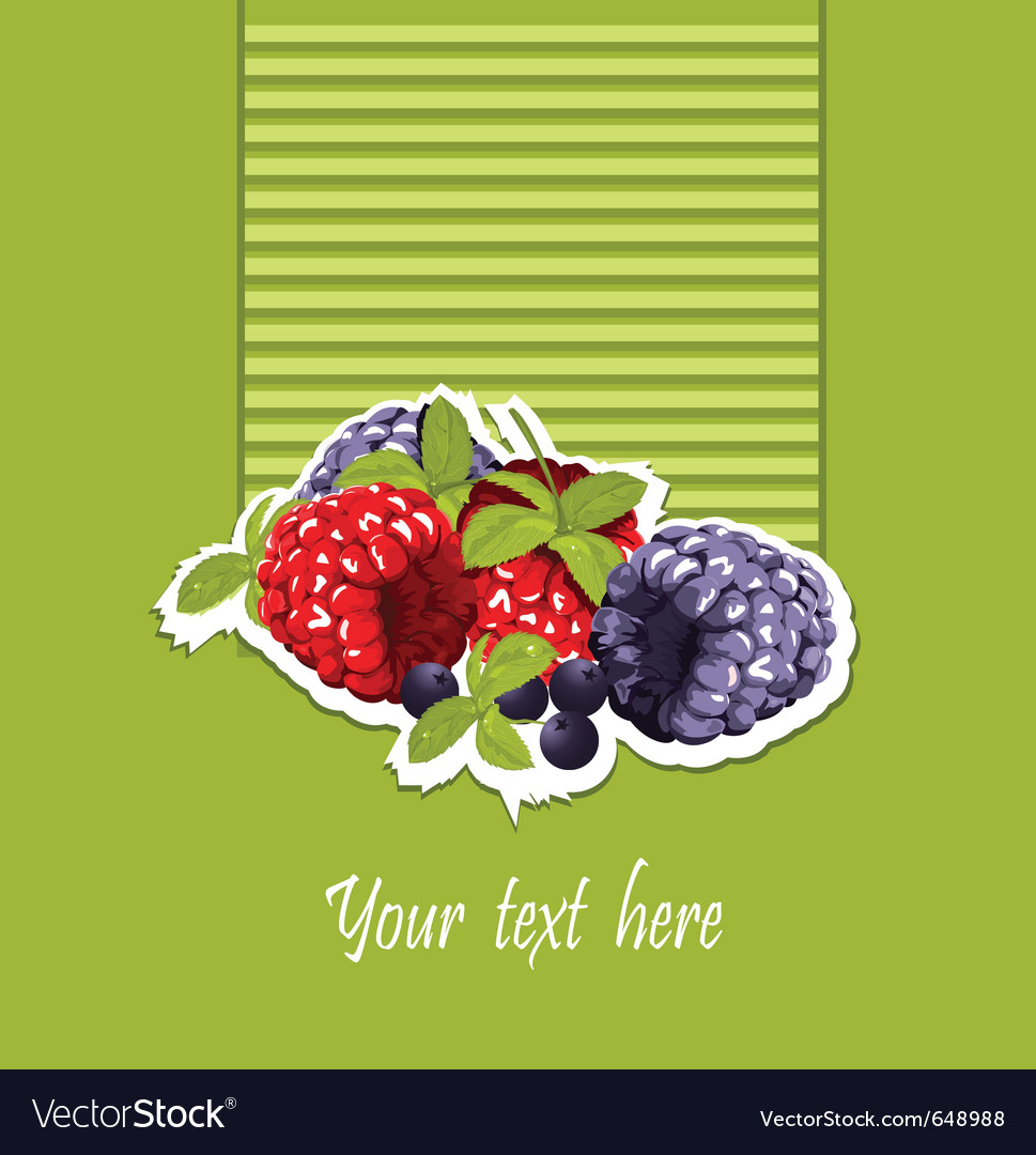 Summer berries vector | Price: 1 Credit (USD $1)