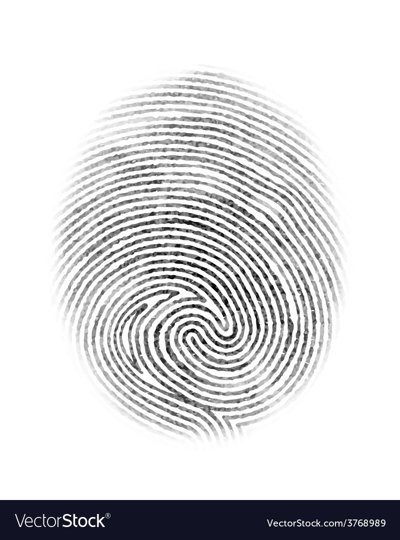 Fingerprint isolated vector | Price: 1 Credit (USD $1)