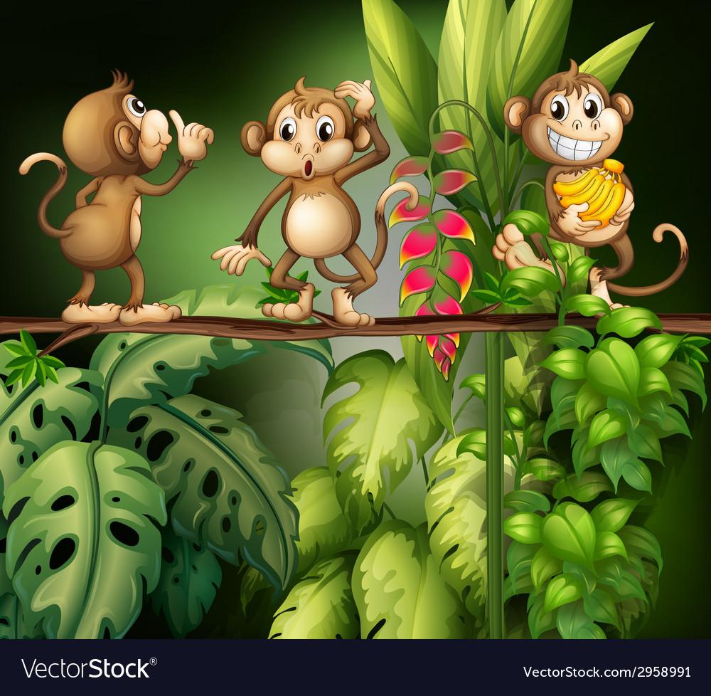 Monkeys vector | Price: 3 Credit (USD $3)