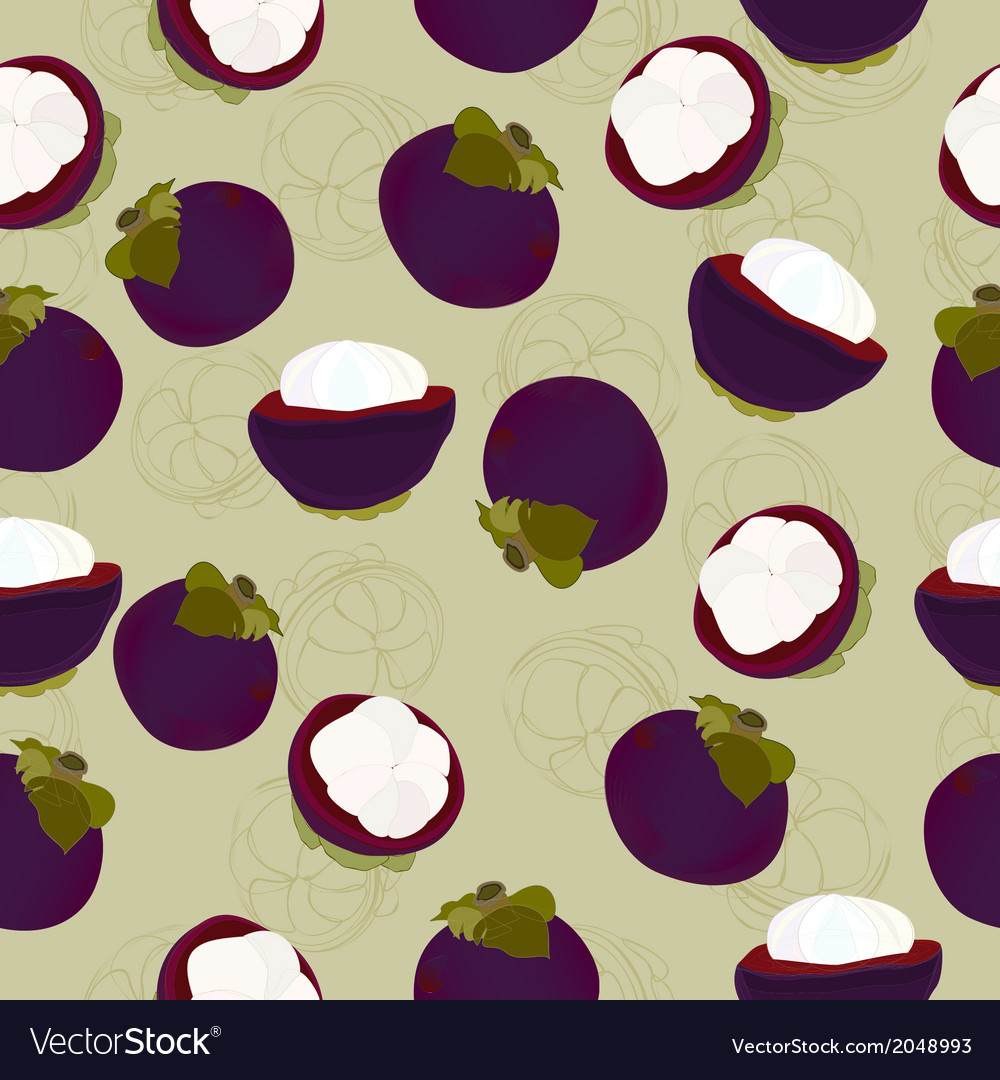 Mangosteen fruit seamless vector | Price: 1 Credit (USD $1)