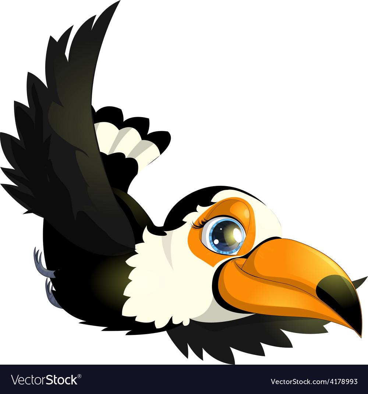 Toucan vector | Price: 1 Credit (USD $1)
