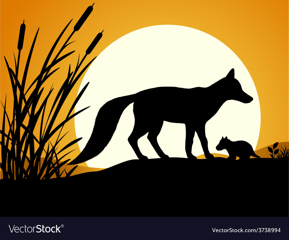 Silhouette of the fox vector | Price: 1 Credit (USD $1)