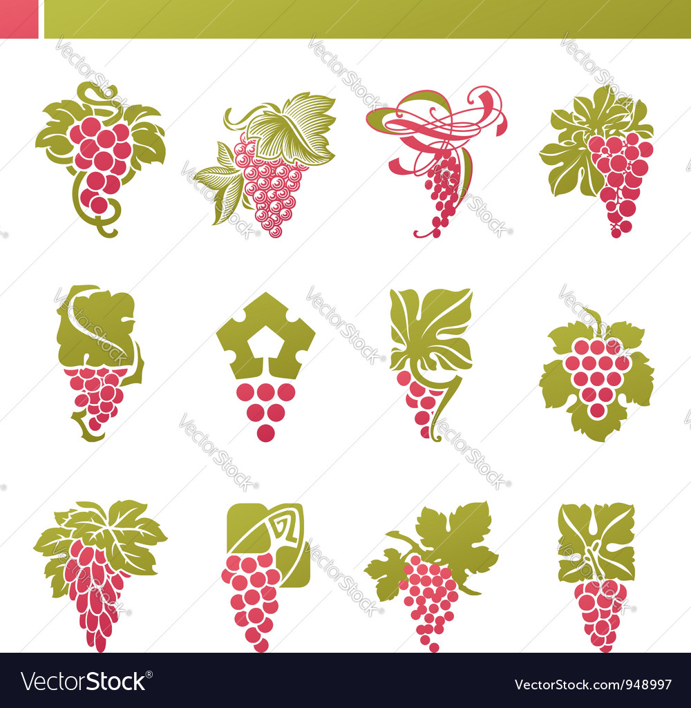 Logo template - grape with green leaf vector | Price: 1 Credit (USD $1)