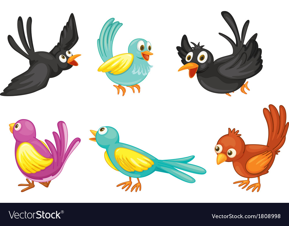 Six colorful birds vector   Price: 1 Credit (USD $1)