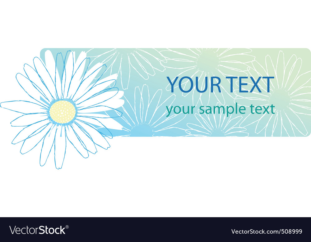 Beautiful camomile floral banner vector | Price: 1 Credit (USD $1)