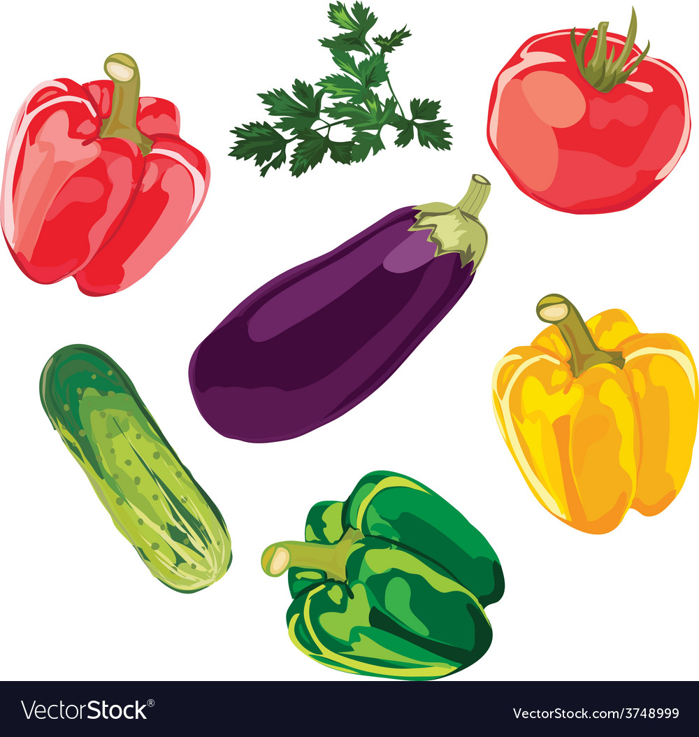 Set of vegetables on a white background vector | Price: 1 Credit (USD $1)