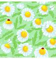 Spring seamless vector