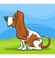 Basset hound dog cartoon vector