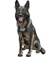 Color sketch black dog german shepherd breed vector