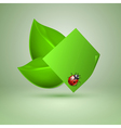 Two green leaves with ladybird vector