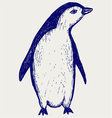 Penguin sketch vector