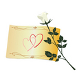 Greeting with white rose vector