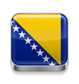 Metal icon of bosnia and herzegovina vector