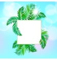 Square card with palm leaves vector