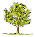 Green hand drawn tree on white background simple vector
