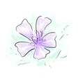 Flower sketch vector