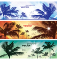 Exotic palm trees background banners vector