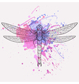 Dragonfly with watercolor splash vector