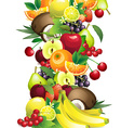 Different fruits with leaves and flowers vector