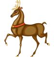 Rudolph vector