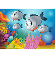Four gray fishes under the sea vector